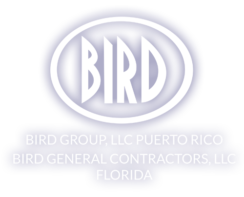 Birdi_logo_white
